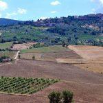 Villa Allegra - omgeving