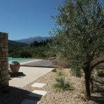 Villa Les Dentelles - olijfbomen-zwembad