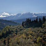 Villa Les Dentelles - uitzicht