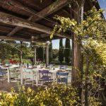 Villa Montepulciano - terras