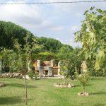 Villa Les Arcs-sur-Argens - tuin