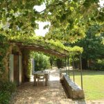 Villa Lucca- patio