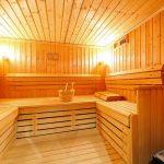 Chalet Les Cèdres - sauna