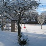 Vakantiehuis Le Lodge du Lac - tuin winter