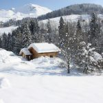 Chalet Le Chevreuil - chalet winter