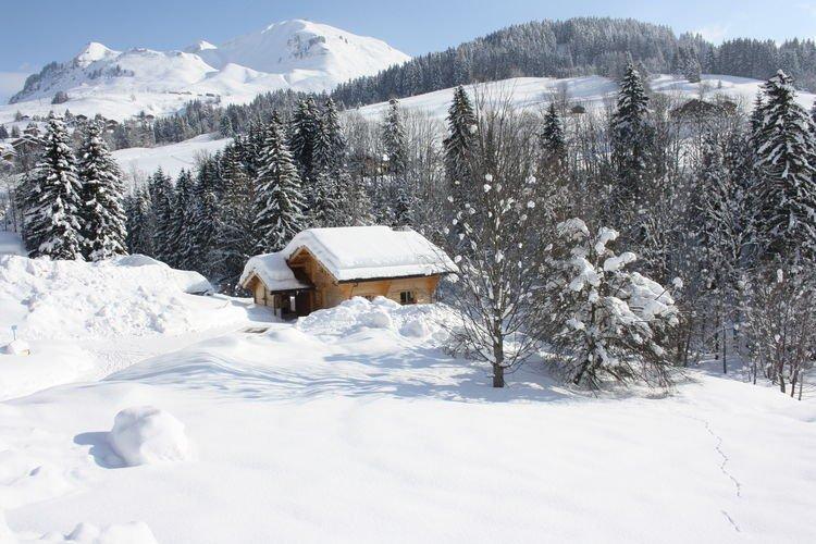 Chalet Le Chevreuil - chalet winter