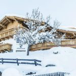 Chalet Lodge of Joy - chalet winter