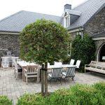 Vakantiehuis Le Cottage de Paliseul - terras