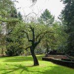 Vakantiehuis Les Cygnes Noirs - tuin