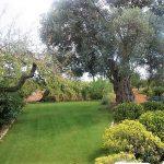 Villa Can Elisa - tuin