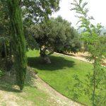 Villa Mesquita - omgeving